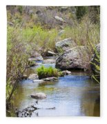 Mountain Stream In Castlewood Canyon State Park Fleece Blanket