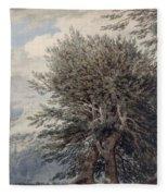 Mountainous Landscape With Beech Trees Fleece Blanket