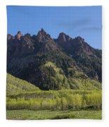 Mountains Co Sievers 2 A Fleece Blanket
