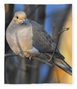 Mourning Dove On Limb Fleece Blanket
