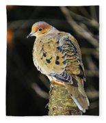 Mourning Dove On Post Fleece Blanket
