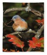 Mr Bluebird Fleece Blanket