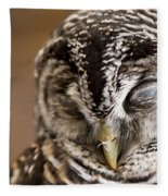 Mr Sleepyhead Fleece Blanket