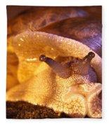 Mr. Snail Fleece Blanket