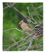Mrs. Cardinal Fleece Blanket
