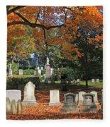 Mt Auburn Cemetery 12 Fleece Blanket