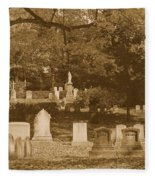 Mt Auburn Cemetery 13 Sepia Fleece Blanket
