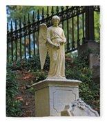 Mt Auburn Cemetery 3 Fleece Blanket