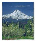 1m5125-mt. Hood In Spring Fleece Blanket