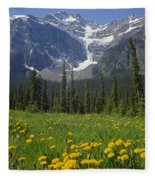 1m3613-mt. Patterson And The Snowbird Glacier Fleece Blanket