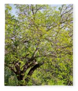 Mulberry Tree Fleece Blanket