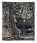 Mule Deer Buck Fleece Blanket