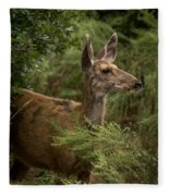 Mule Deer On Alert Fleece Blanket