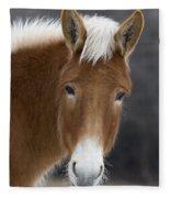 Mule Fleece Blanket