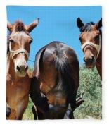 Mules On Alonissos Island Fleece Blanket