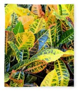 Multi-colored Croton Fleece Blanket