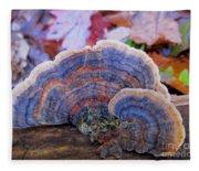 Multicolor Mushroom Fleece Blanket