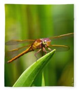 Multicolored Dragonfly Fleece Blanket
