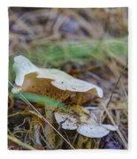 Mushroom 1 Fleece Blanket