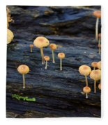 Mushrooms Amazon Jungle Brazil 4 Fleece Blanket