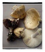 Mushrooms With Watercolor Effect 5 Fleece Blanket