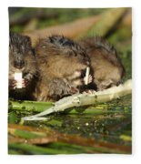 Muskrat Trio Fleece Blanket