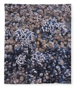 Mussels And Barnacles, Low Tide Fleece Blanket