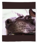 My Dog Bud Fleece Blanket