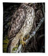 My Hawk Encounter Fleece Blanket