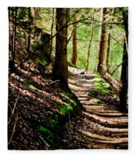 My Path Fleece Blanket