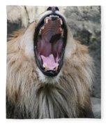 My What Big Teeth You Have Fleece Blanket