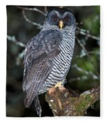 Mysterious Owl Fleece Blanket