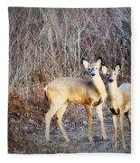 Mystic Duo Fleece Blanket