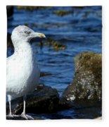 Mystic Seagull Fleece Blanket