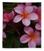 Na Lei Pua Melia O Wailua - Pink Tropical Plumeria Hawaii Fleece Blanket