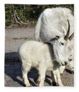 Nanny And Baby Fleece Blanket