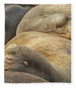 Nap Time 0009 Fleece Blanket