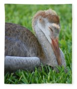 Napping Sandhill Baby Fleece Blanket