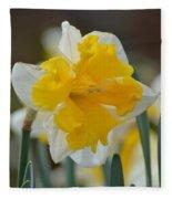 Narcissus 014-2 Fleece Blanket