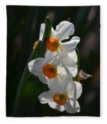 Narcissus Evening Glow Fleece Blanket