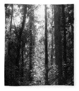 Narrow Path Fleece Blanket