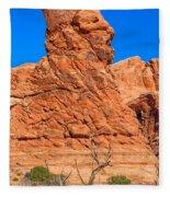 Natural Sculpture Fleece Blanket