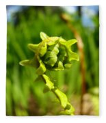 Nature Green Fern Frond Unfolding Art Prints Ferns Fleece Blanket