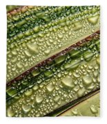 Nature's Colours Fleece Blanket