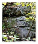 Nature's Mossy Boulders Fleece Blanket