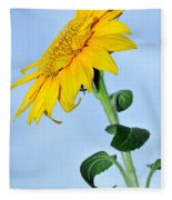 Nature's Sunshine Fleece Blanket
