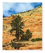 Navajo Sandstone Fleece Blanket