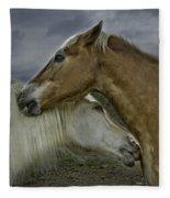 Neighbors Fleece Blanket