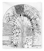 Nerve Cells, 1894 Fleece Blanket