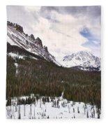 Never Summer Wilderness Area Panorama Fleece Blanket